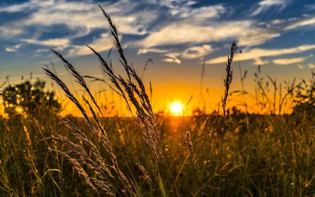 اهمیت نور طبیعی در آموزش نورپردازی در عکاسی